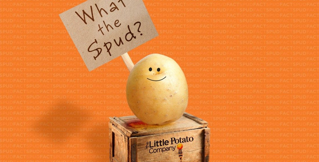 What the spud? Why Little Potatoes are so tasty